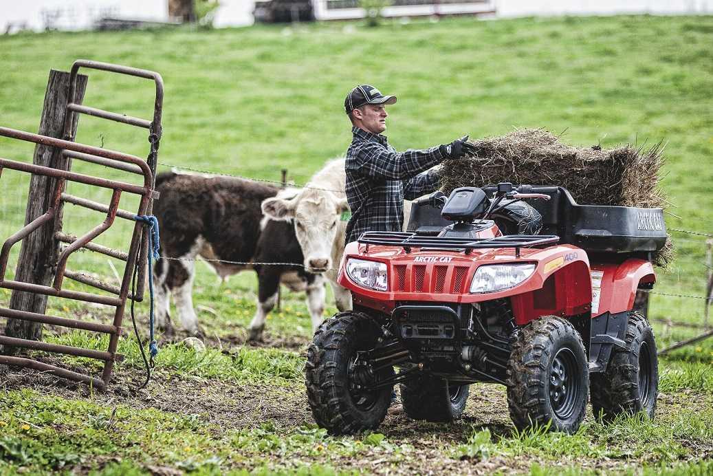 Quad, ATV y UTV: Usos alternativos para las motos de ...