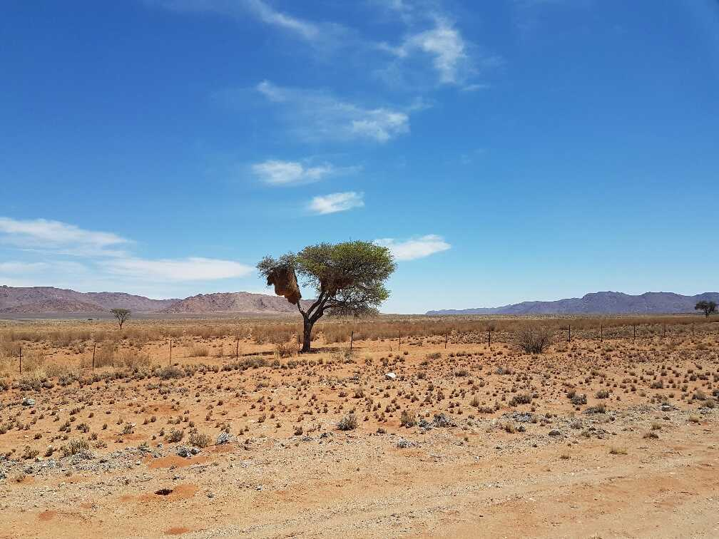 hyundai-accent-namibia-22