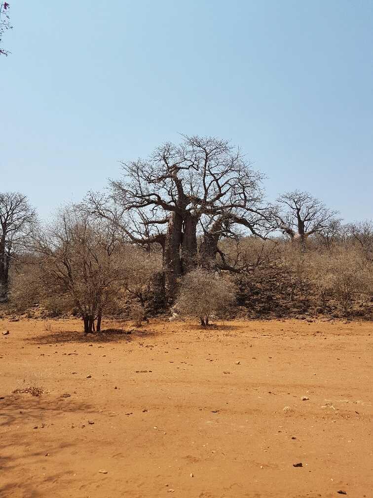 hyundai-accent-namibia-56